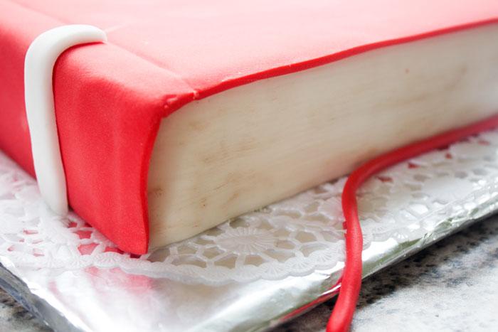 Buchtorte | Bücherwurm | Motivtorte | Nusstorte | Conny's Küchlein