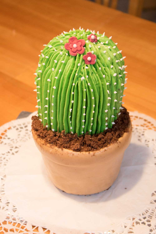 Kaktustorte selber machen_Fondant_Buttercreme