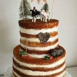 Naked Cake Bauernhoftorte Farmcake
